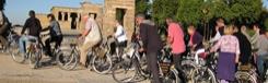 Fietstours en wandeltours door Madrid